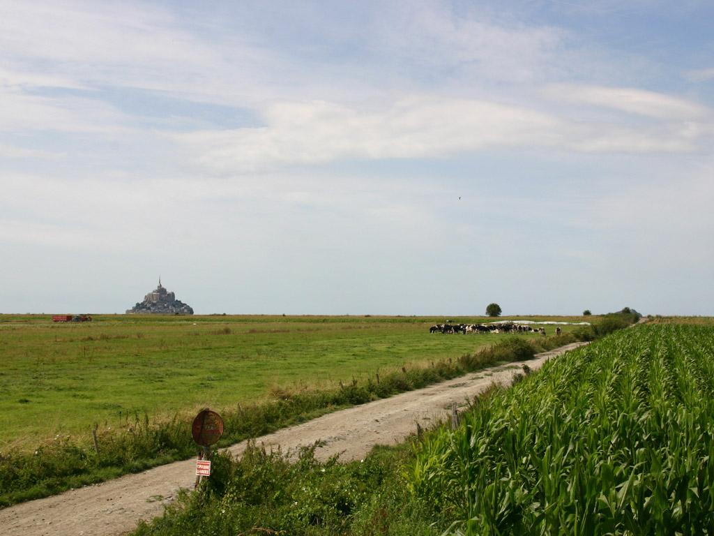 草原とモンサンミッシェル